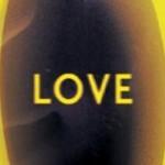 LOVE – A história de Lisey, de Stephen King