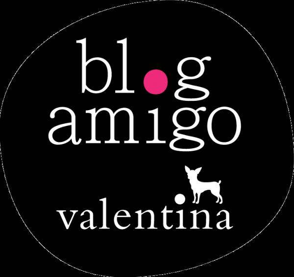 BlogAmigo-selo2014-15